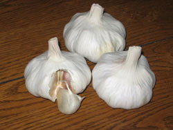 Shilla Garlic